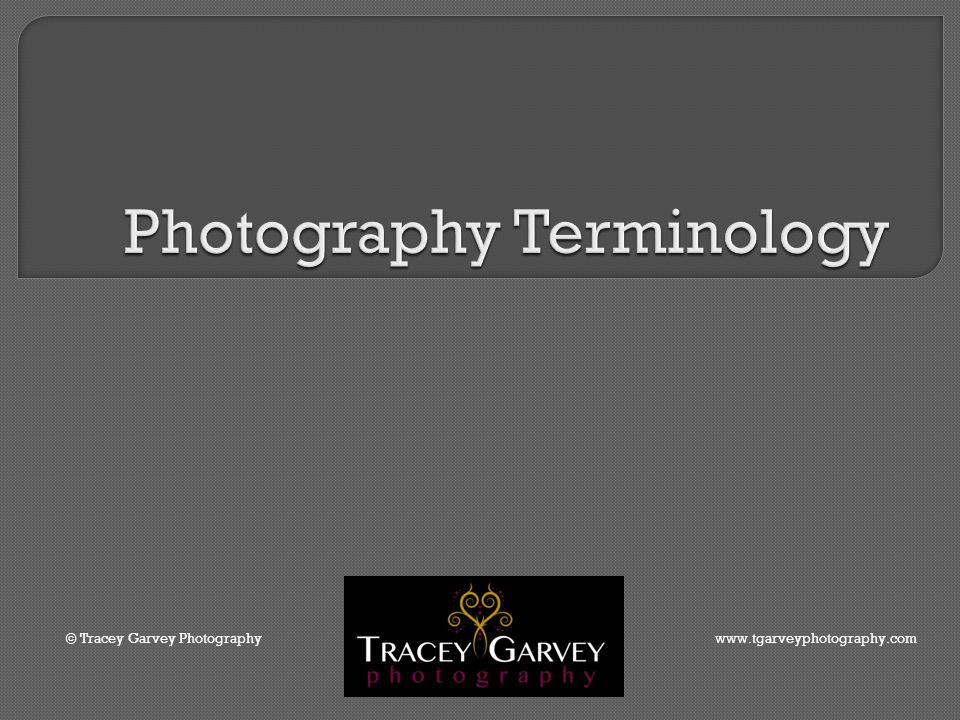 © Tracey Garvey Photography