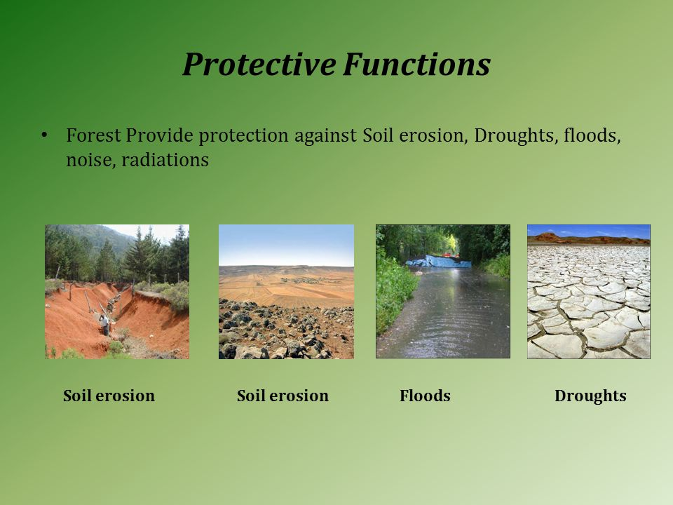 Protective Functions Forest Provide protection against Soil erosion, Droughts, floods, noise, radiations Soil erosionFloodsSoil erosion Droughts