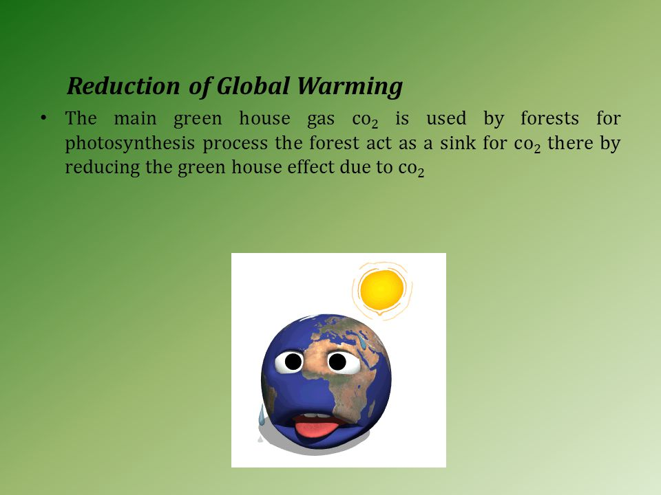 Reduction of Global Warming The main green house gas co 2 is used by forests for photosynthesis process the forest act as a sink for co 2 there by reducing the green house effect due to co 2