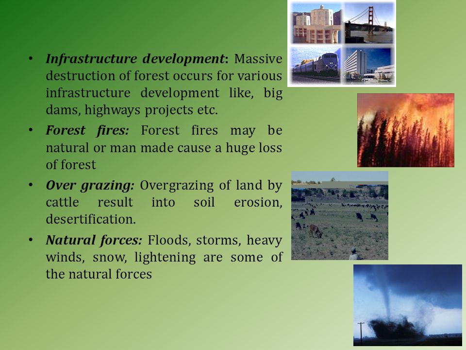 Infrastructure development: Massive destruction of forest occurs for various infrastructure development like, big dams, highways projects etc.