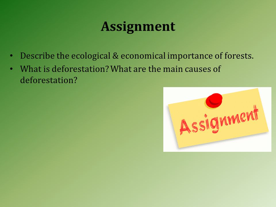 Assignment Describe the ecological & economical importance of forests.