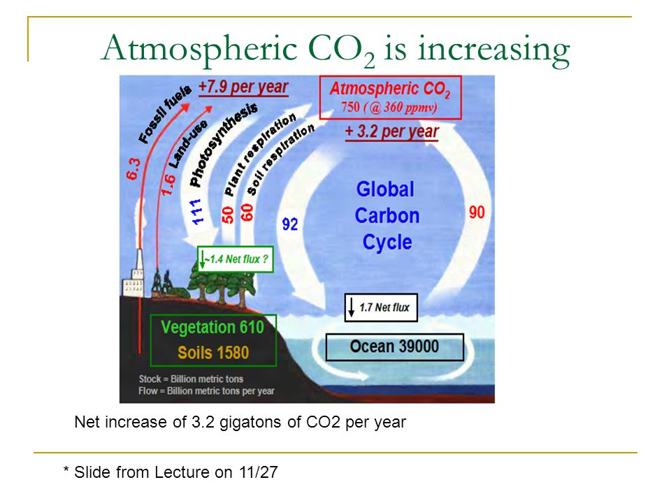 Atmospheric CO 2 is increasing * Slide from Lecture on 11/27 Net increase of 3.2 gigatons of CO2 per year