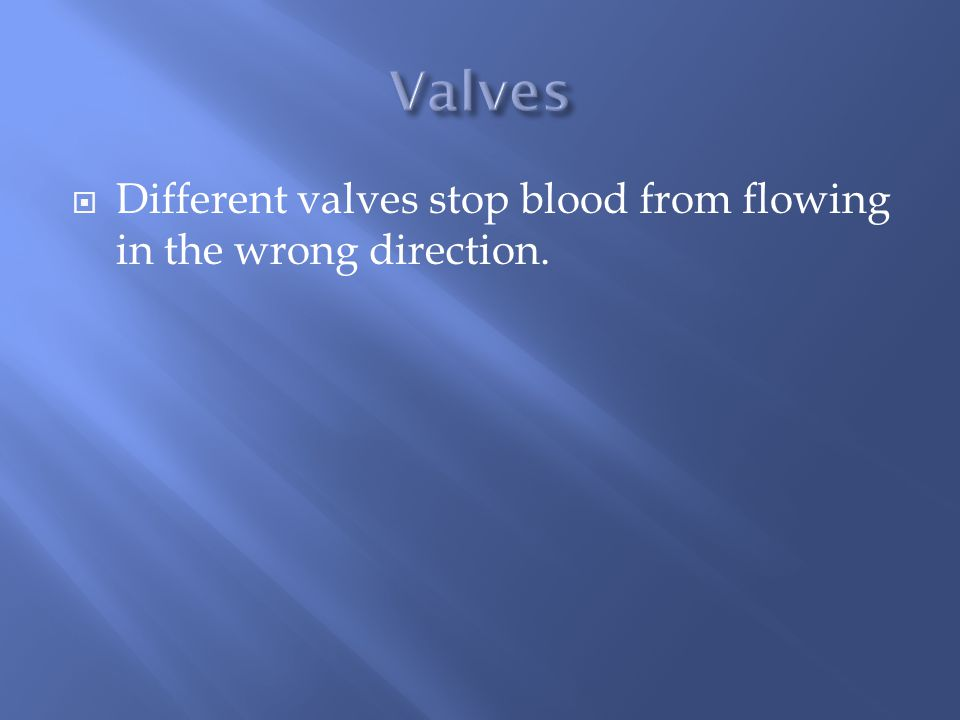  Different valves stop blood from flowing in the wrong direction.