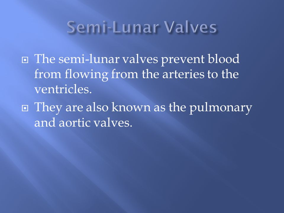  The semi-lunar valves prevent blood from flowing from the arteries to the ventricles.
