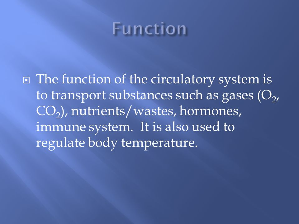  The function of the circulatory system is to transport substances such as gases (O 2, CO 2 ), nutrients/wastes, hormones, immune system.