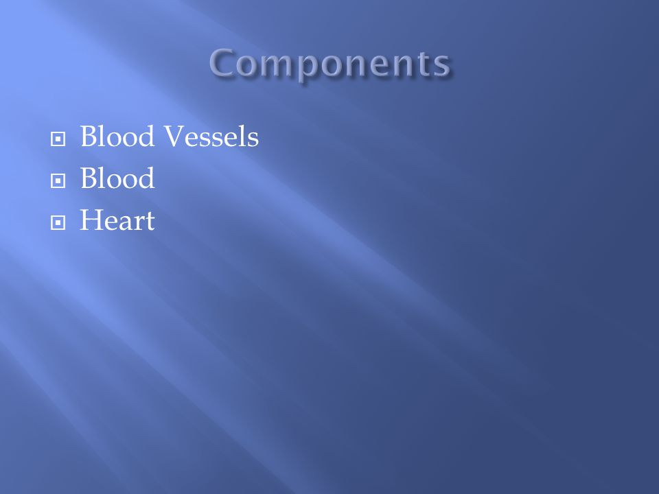  Blood Vessels  Blood  Heart