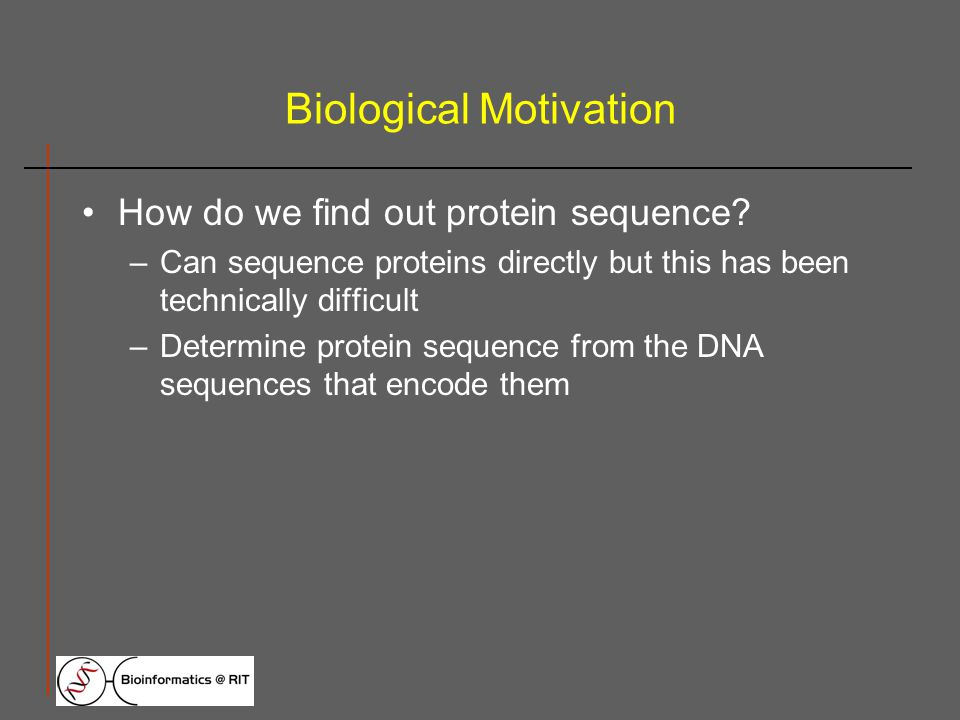 Biological Motivation How do we find out protein sequence.