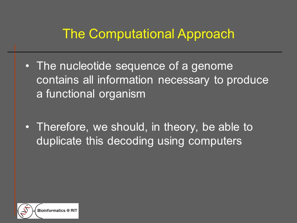 The Computational Approach The nucleotide sequence of a genome contains all information necessary to produce a functional organism Therefore, we should, in theory, be able to duplicate this decoding using computers