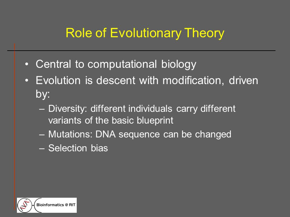 Role of Evolutionary Theory Central to computational biology Evolution is descent with modification, driven by: –Diversity: different individuals carry different variants of the basic blueprint –Mutations: DNA sequence can be changed –Selection bias