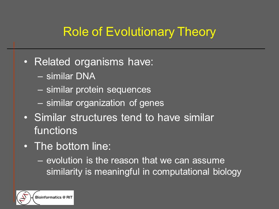 Role of Evolutionary Theory Related organisms have: –similar DNA –similar protein sequences –similar organization of genes Similar structures tend to have similar functions The bottom line: –evolution is the reason that we can assume similarity is meaningful in computational biology