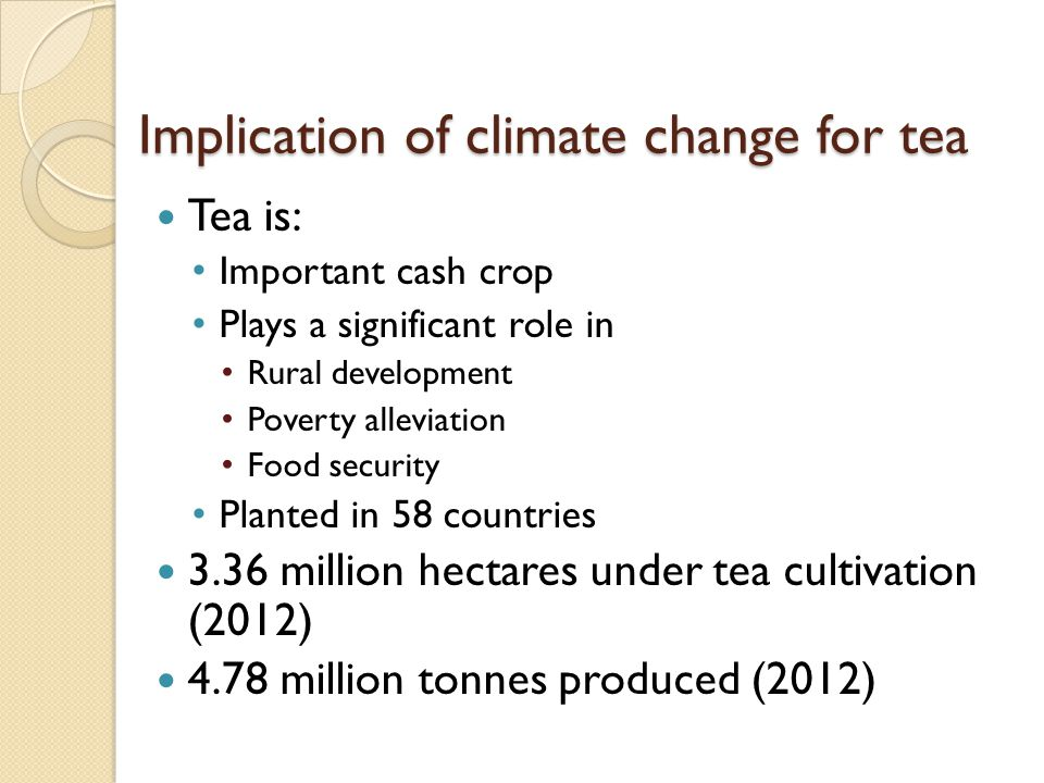 Implication of climate change for tea Tea is: Important cash crop Plays a significant role in Rural development Poverty alleviation Food security Planted in 58 countries 3.36 million hectares under tea cultivation (2012) 4.78 million tonnes produced (2012)