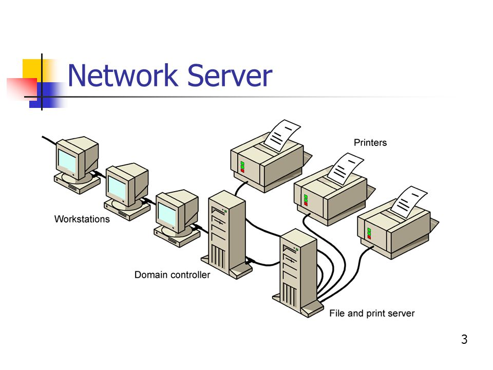 Survey Of Network Operating Systems Nos Introduction Novell