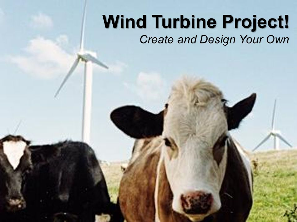 Wind Turbine Project! Create and Design Your Own