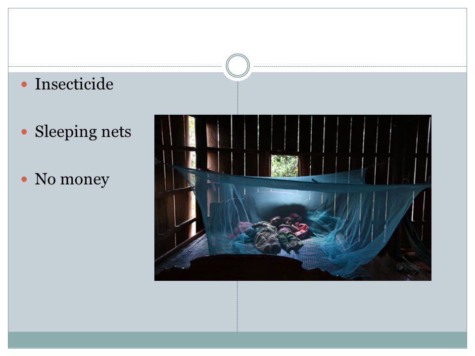 Insecticide Sleeping nets No money