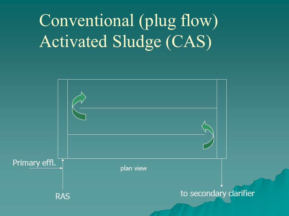Conventional (plug flow) Activated Sludge (CAS) plan view Primary effl. to secondary clarifier RAS