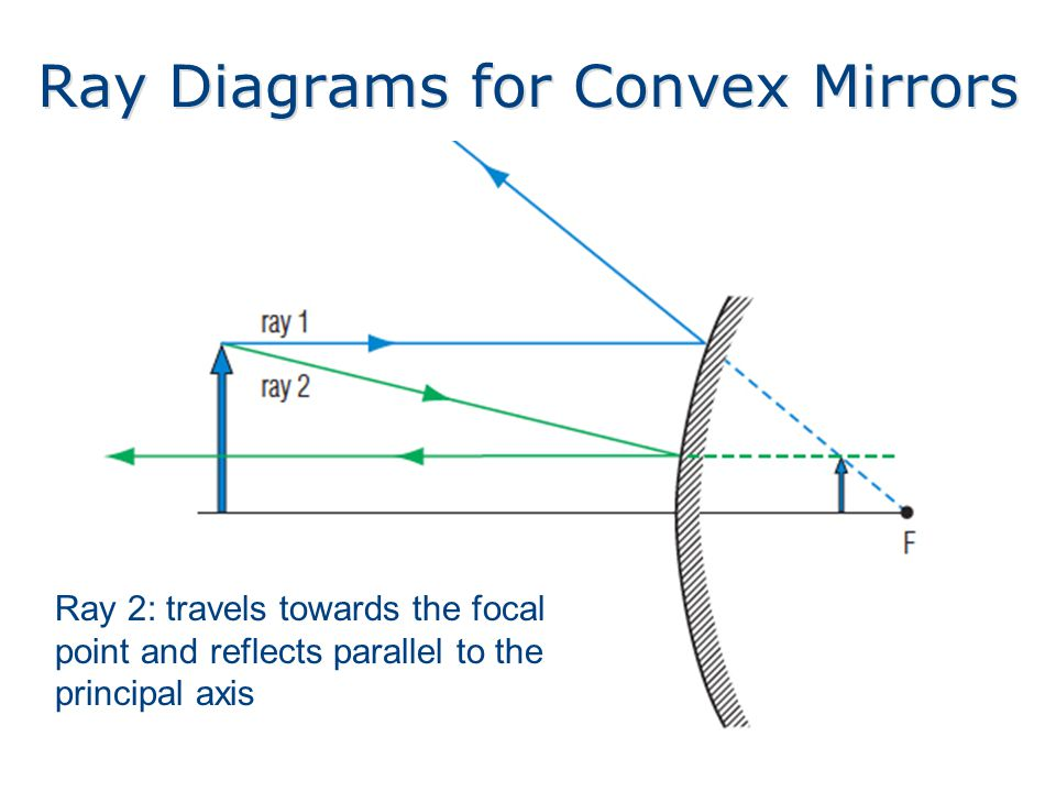 Ray Diagrams for Convex Mirrors Ray 2: travels towards the focal point and reflects parallel to the principal axis