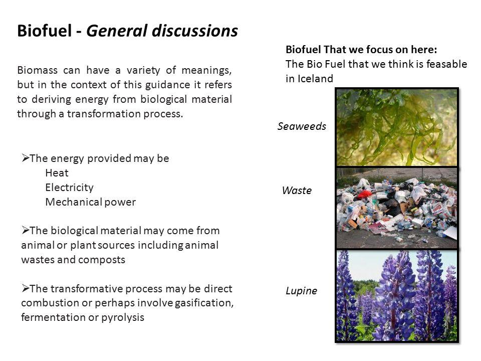 Biofuel Environmental impact Group 2 – Hulda Dagmar and Mervi  - ppt