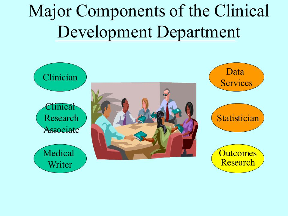 Major Components of the Clinical Development Department Statistician Outcomes Research Clinician Data Services Medical Writer Clinical Research Associate