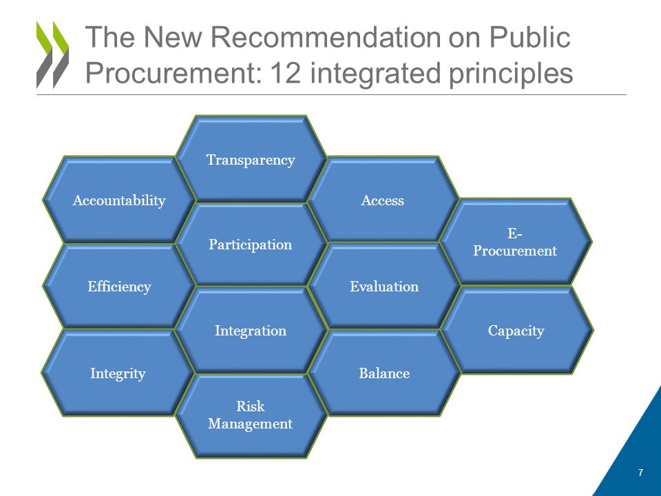 Participation Efficiency Capacity Integrity Access Balance E- Procurement Evaluation Risk Management Transparency Integration Accountability 7 The New Recommendation on Public Procurement: 12 integrated principles
