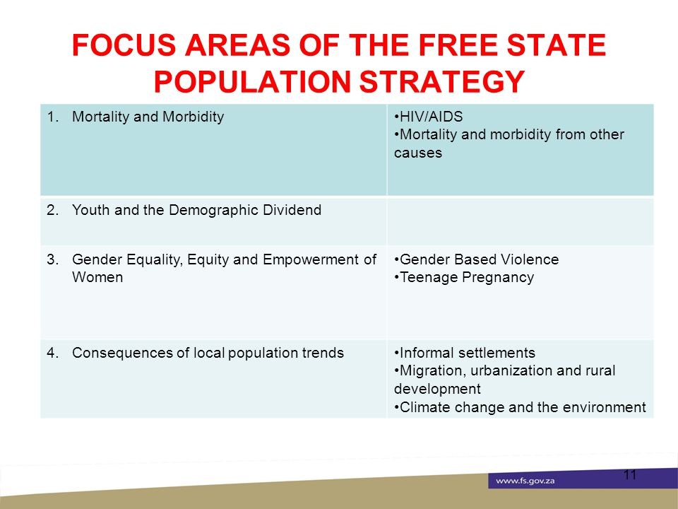 FOCUS AREAS OF THE FREE STATE POPULATION STRATEGY 11 1.Mortality and MorbidityHIV/AIDS Mortality and morbidity from other causes 2.Youth and the Demographic Dividend 3.Gender Equality, Equity and Empowerment of Women Gender Based Violence Teenage Pregnancy 4.Consequences of local population trendsInformal settlements Migration, urbanization and rural development Climate change and the environment