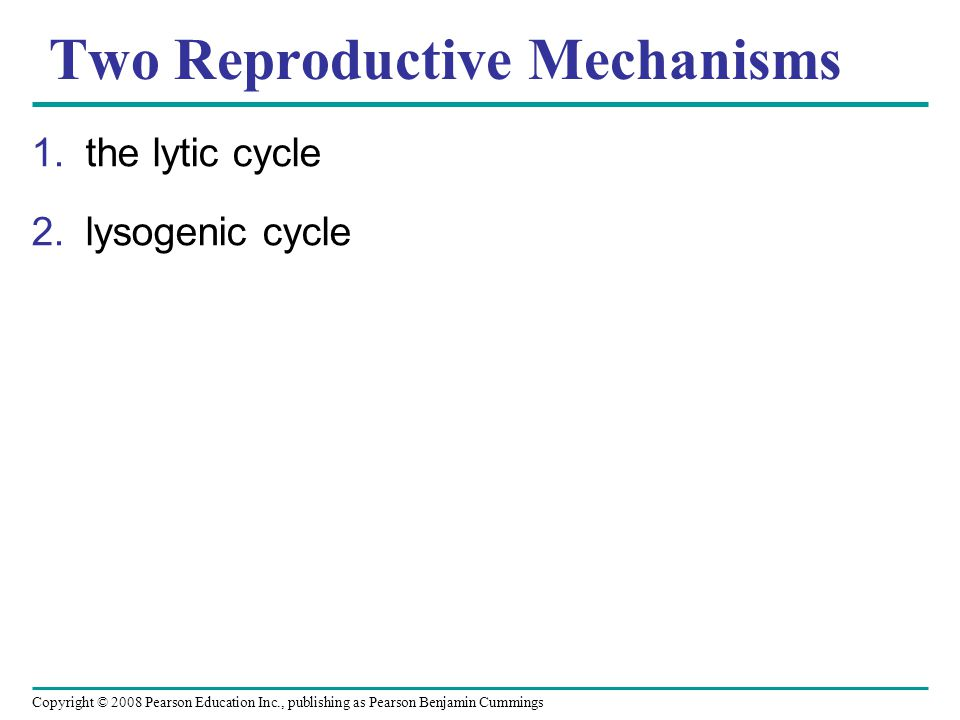 Copyright © 2008 Pearson Education Inc., publishing as Pearson Benjamin Cummings Two Reproductive Mechanisms 1.the lytic cycle 2.lysogenic cycle