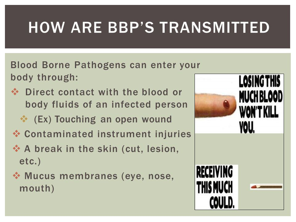 Blood Borne Pathogens can enter your body through:  Direct contact with the blood or body fluids of an infected person  (Ex) Touching an open wound  Contaminated instrument injuries  A break in the skin (cut, lesion, etc.)  Mucus membranes (eye, nose, mouth) HOW ARE BBP'S TRANSMITTED