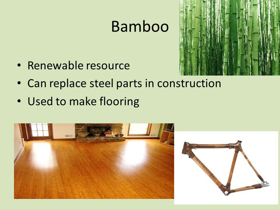 Bamboo Renewable resource Can replace steel parts in construction Used to make flooring