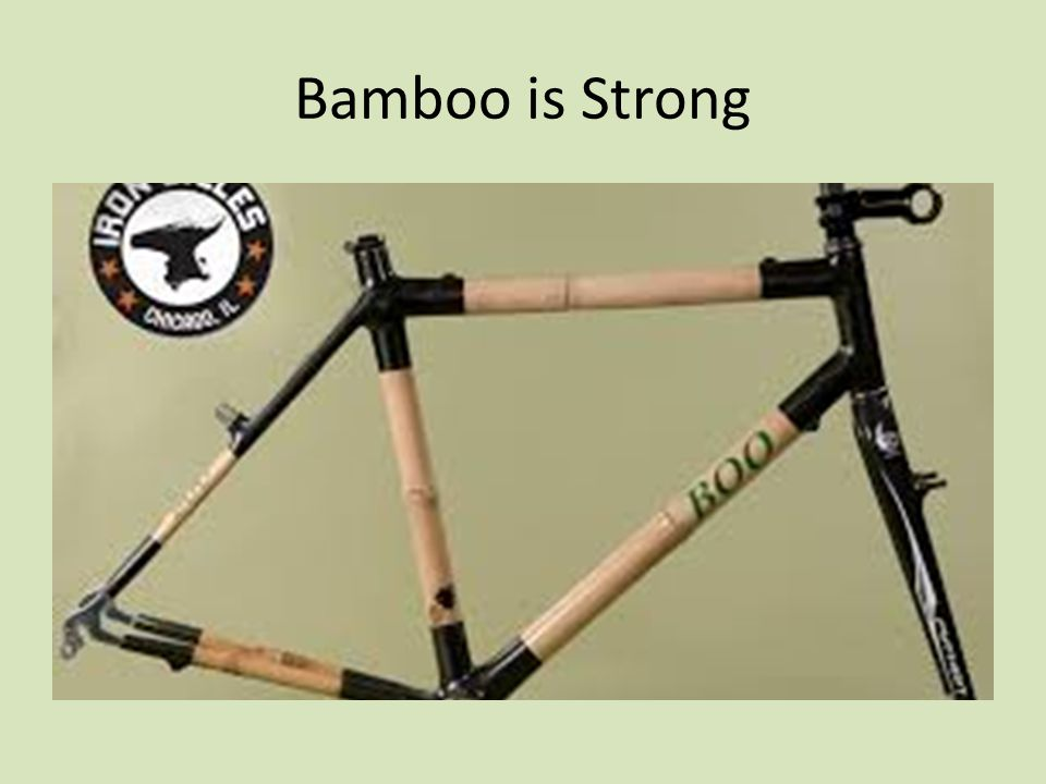 Bamboo is Strong