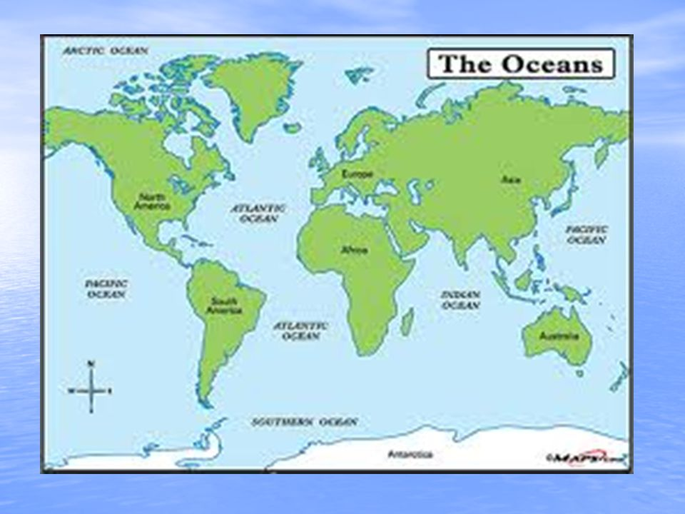 The marine biome by alyssa hope geographical location it is the geographical location it is the largest of all the biomes covering three fourths of the earth gumiabroncs Image collections