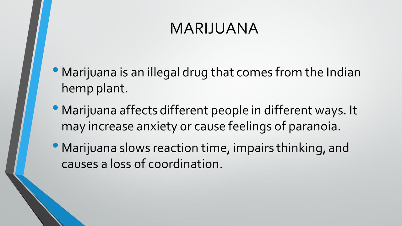 MARIJUANA Marijuana is an illegal drug that comes from the Indian hemp plant.