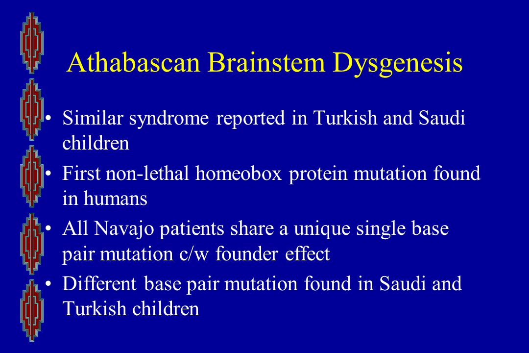Athabascan Brainstem Dysgenesis Similar syndrome reported in Turkish and Saudi children First non-lethal homeobox protein mutation found in humans All Navajo patients share a unique single base pair mutation c/w founder effect Different base pair mutation found in Saudi and Turkish children
