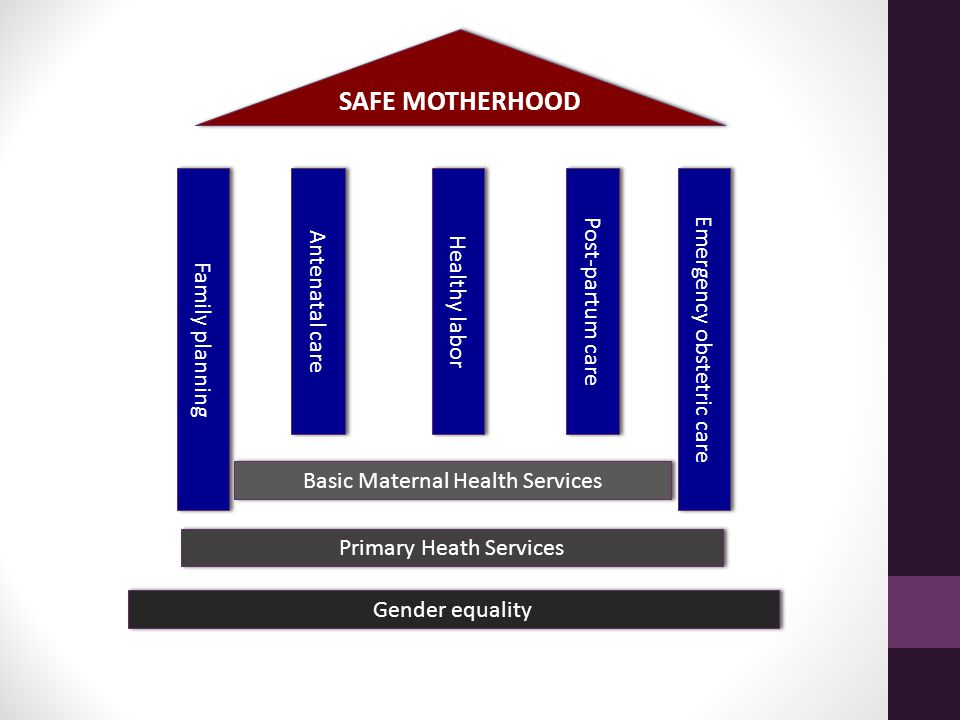 Gender equality SAFE MOTHERHOOD Antenatal care Family planning Healthy labor Primary Heath Services Basic Maternal Health Services Post-partum care Emergency obstetric care