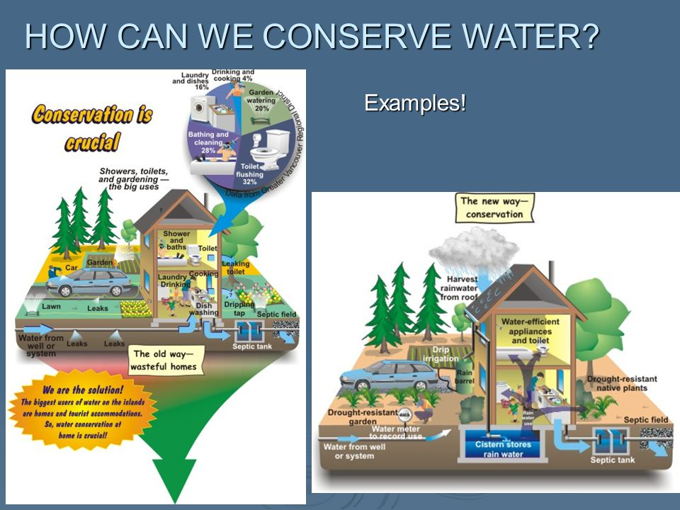 HOW CAN WE CONSERVE WATER Examples!