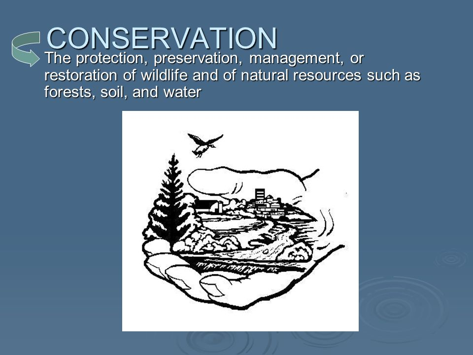 CONSERVATION The protection, preservation, management, or restoration of wildlife and of natural resources such as forests, soil, and water