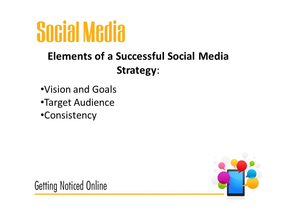 Elements of a Successful Social Media Strategy: Vision and Goals Target Audience Consistency