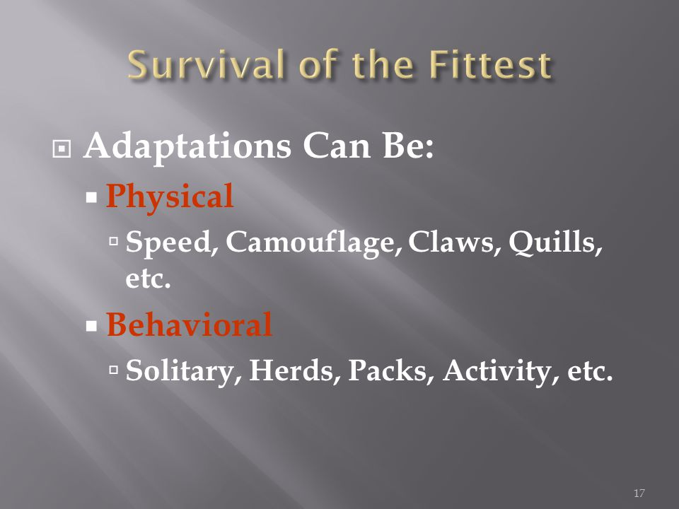  Adaptations Can Be:  Physical  Speed, Camouflage, Claws, Quills, etc.
