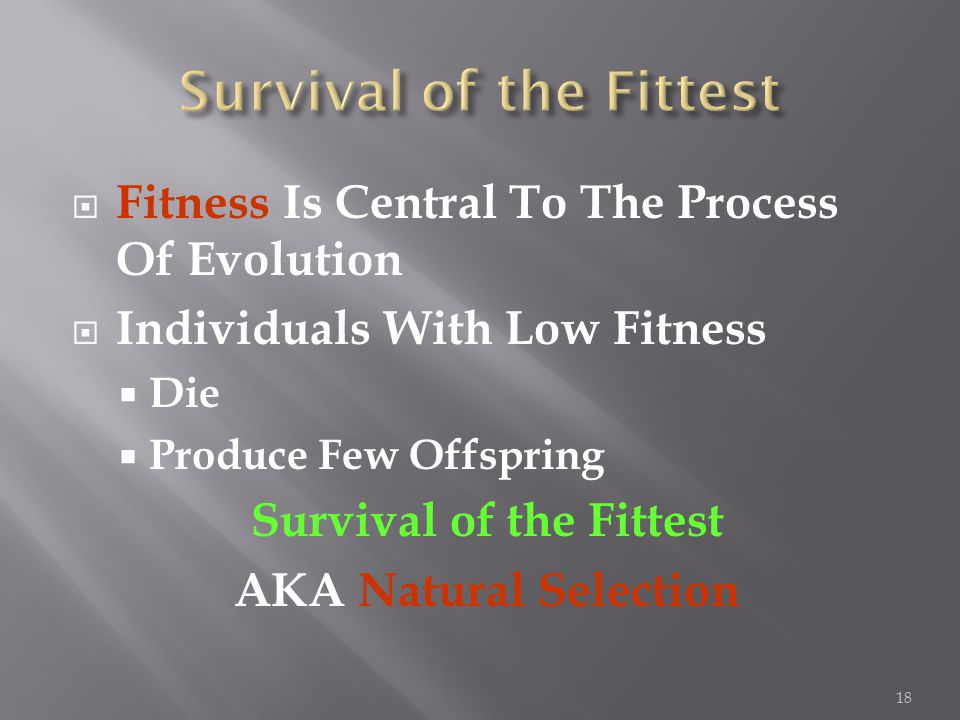  Fitness Is Central To The Process Of Evolution  Individuals With Low Fitness  Die  Produce Few Offspring Survival of the Fittest AKA Natural Selection 18