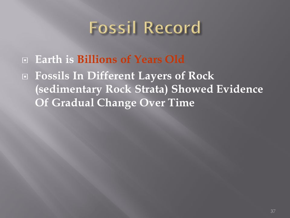  Earth is Billions of Years Old  Fossils In Different Layers of Rock (sedimentary Rock Strata) Showed Evidence Of Gradual Change Over Time 37