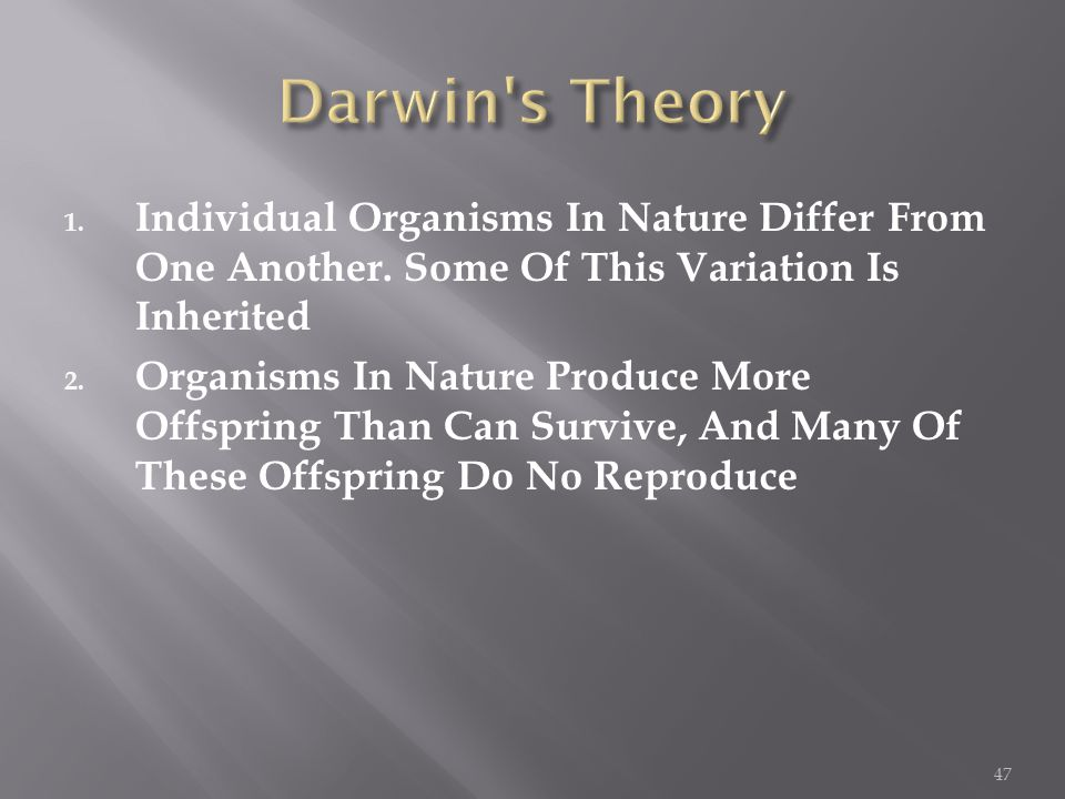 1. Individual Organisms In Nature Differ From One Another.