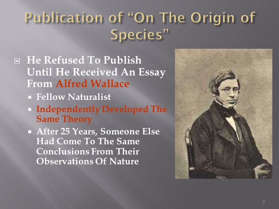  He Refused To Publish Until He Received An Essay From Alfred Wallace  Fellow Naturalist  Independently Developed The Same Theory  After 25 Years, Someone Else Had Come To The Same Conclusions From Their Observations Of Nature 7