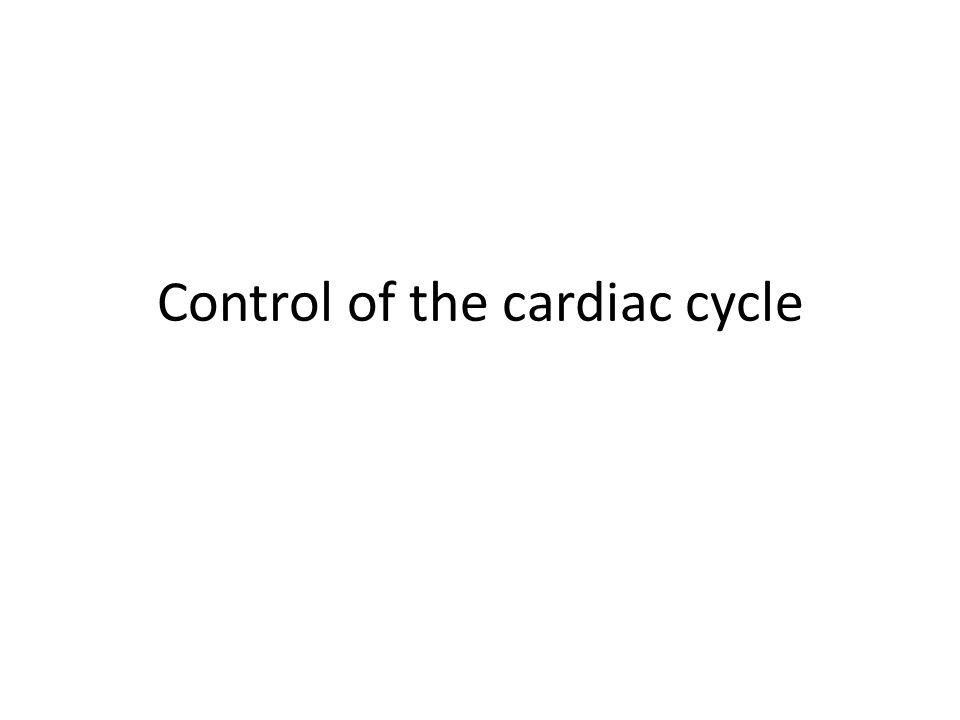Control Of The Cardiac Cycle Learning Intentions Describe