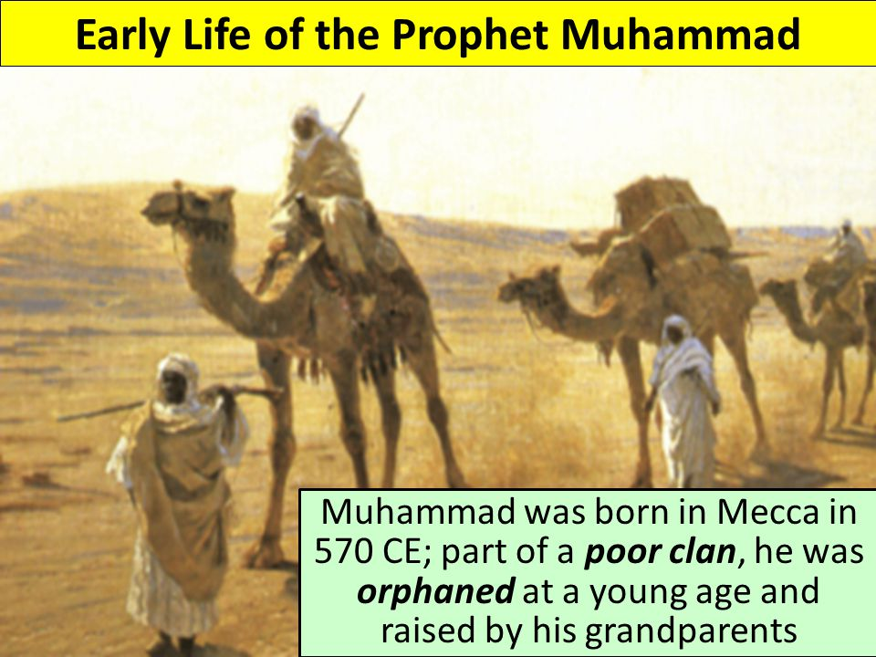 Early Life of the Prophet Muhammad Muhammad was born in Mecca in 570 CE; part of a poor clan, he was orphaned at a young age and raised by his grandparents