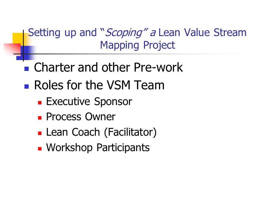 Setting up and Scoping a Lean Value Stream Mapping Project Charter and other Pre-work Roles for the VSM Team Executive Sponsor Process Owner Lean Coach (Facilitator) Workshop Participants