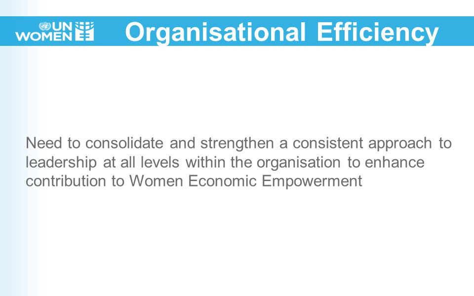 Organisational Efficiency Need to consolidate and strengthen a consistent approach to leadership at all levels within the organisation to enhance contribution to Women Economic Empowerment