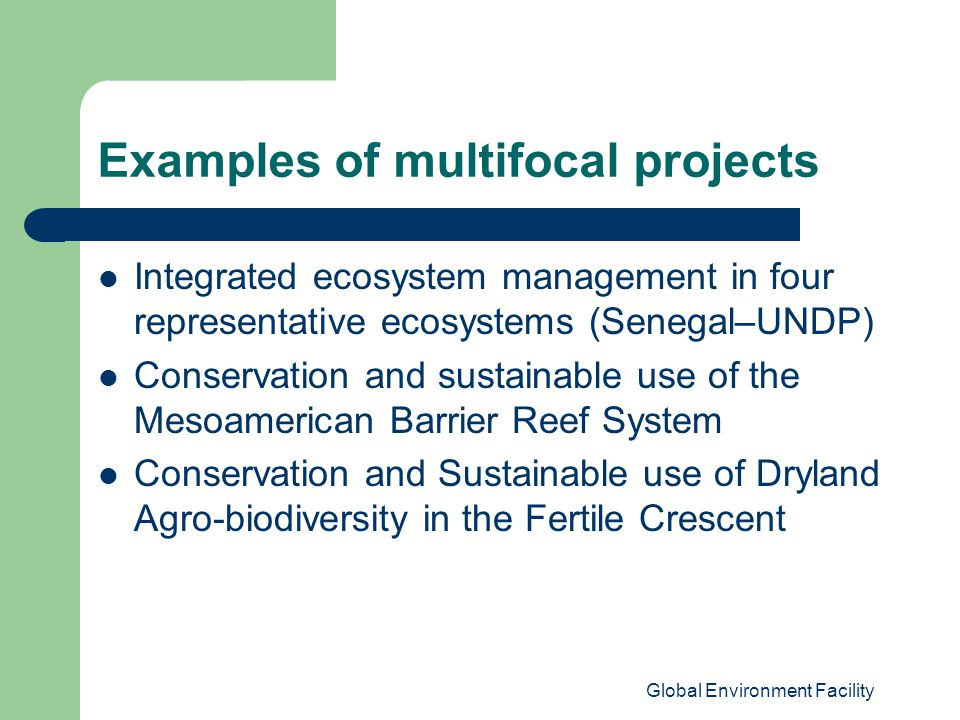 Global Environment Facility Examples of multifocal projects Integrated ecosystem management in four representative ecosystems (Senegal–UNDP) Conservation and sustainable use of the Mesoamerican Barrier Reef System Conservation and Sustainable use of Dryland Agro-biodiversity in the Fertile Crescent