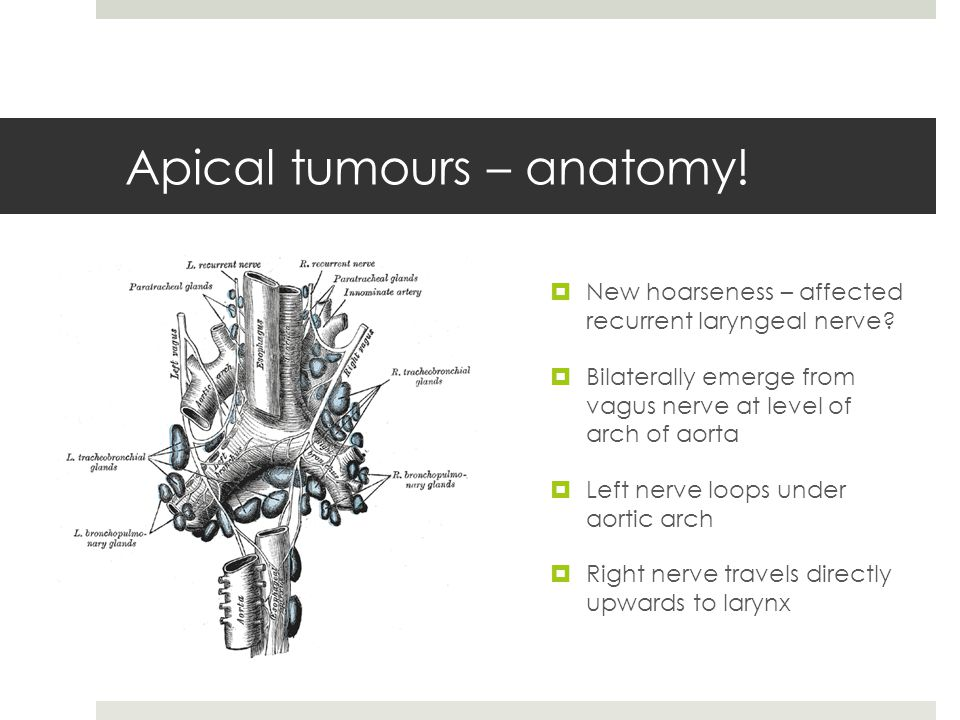 Apical tumours – anatomy.  New hoarseness – affected recurrent laryngeal nerve.