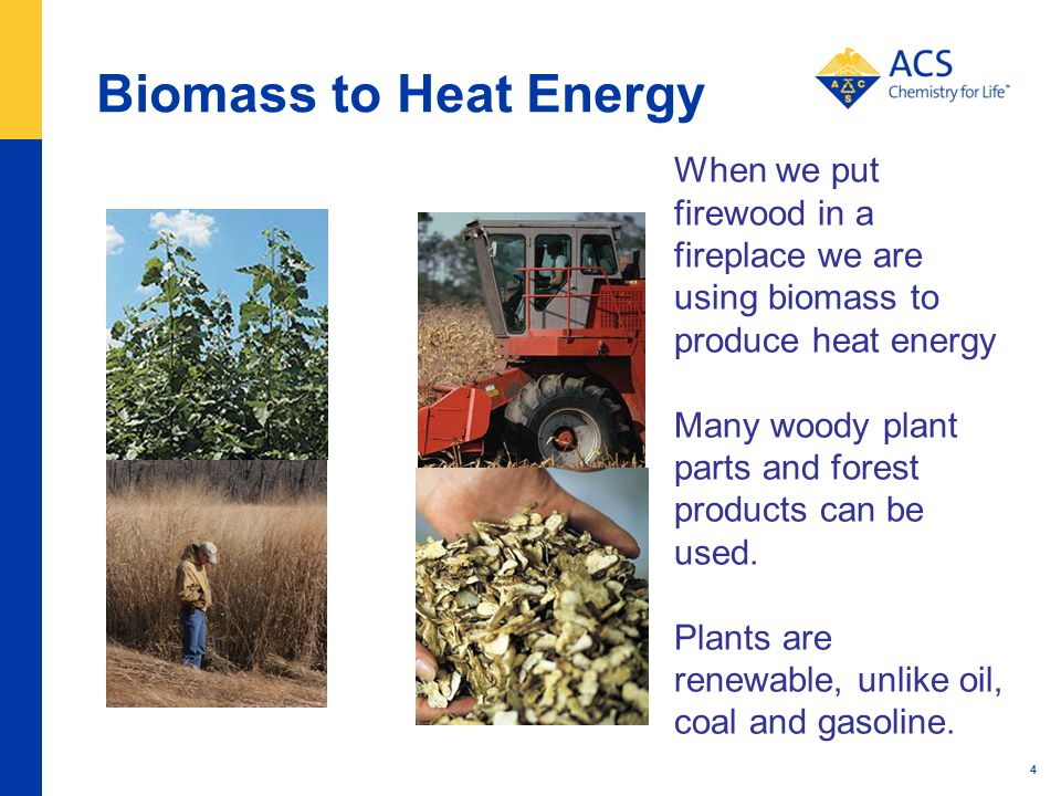 Biomass to Heat Energy 4 When we put firewood in a fireplace we are using biomass to produce heat energy Many woody plant parts and forest products can be used.