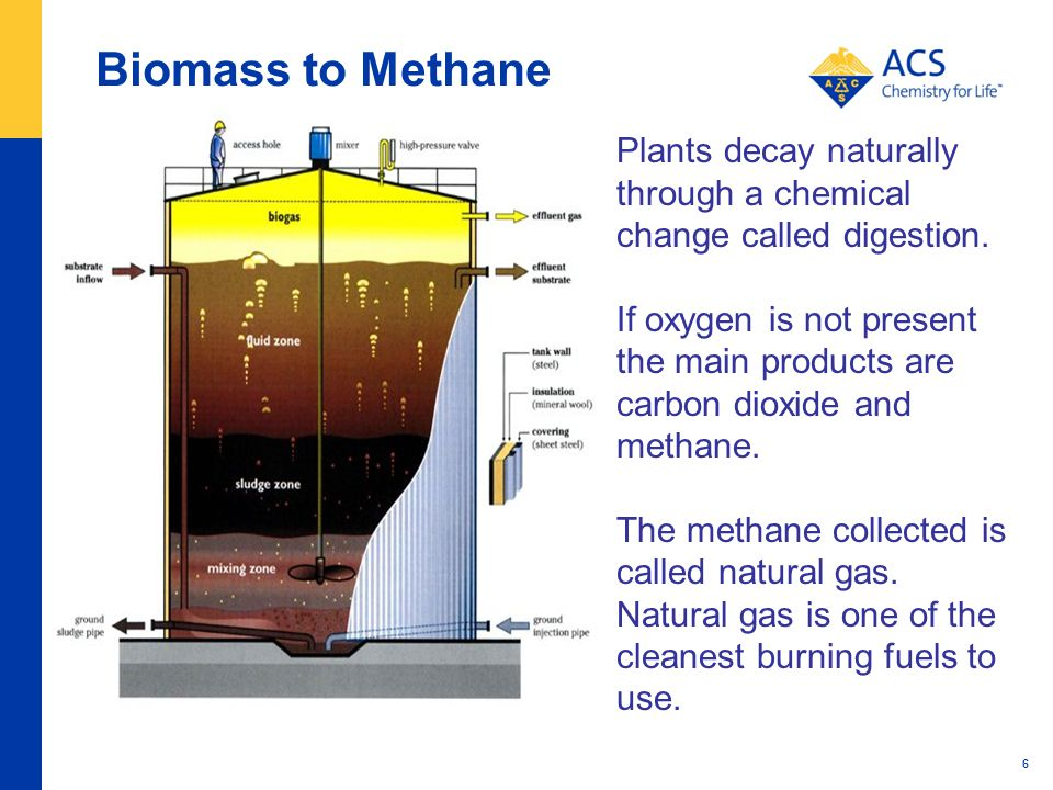 Biomass to Methane 6 Plants decay naturally through a chemical change called digestion.