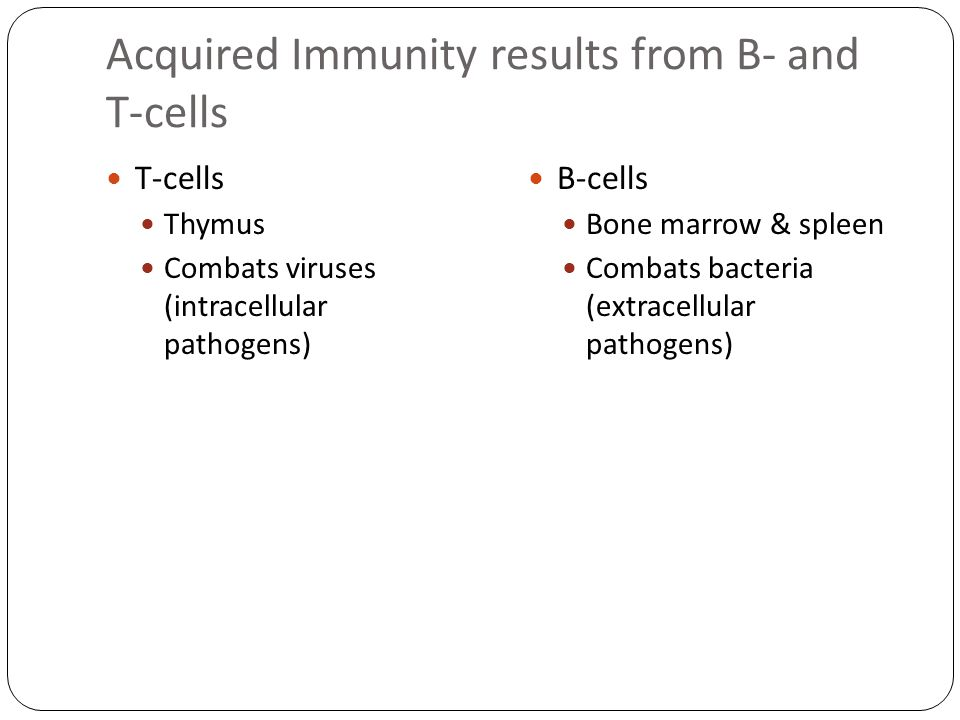 Acquired Immunity results from B- and T-cells T-cells Thymus Combats viruses (intracellular pathogens) B-cells Bone marrow & spleen Combats bacteria (extracellular pathogens)