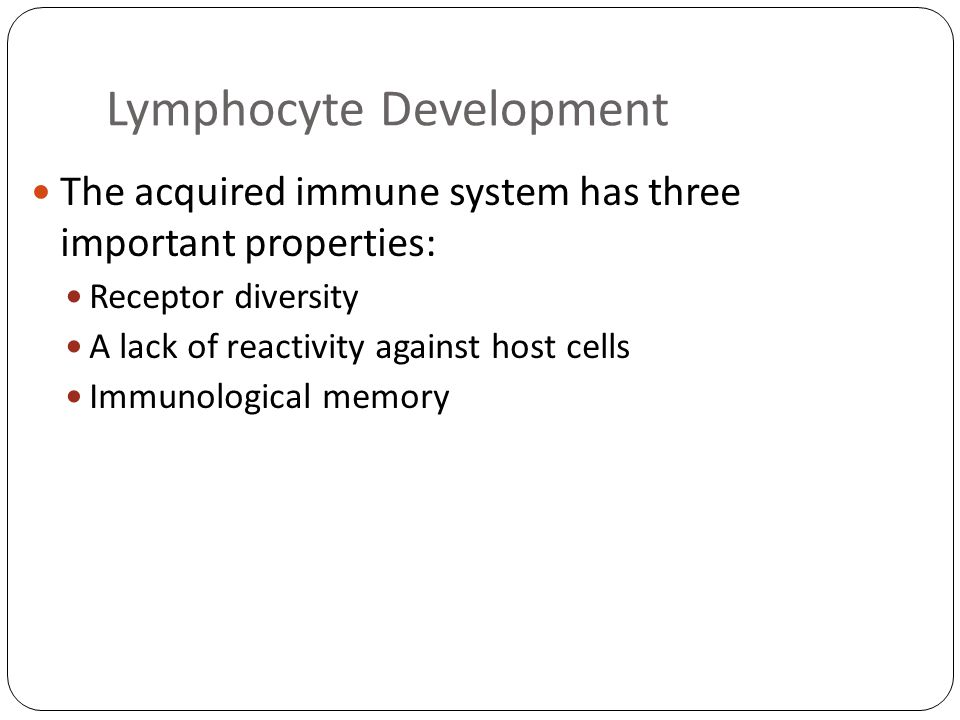 Lymphocyte Development The acquired immune system has three important properties: Receptor diversity A lack of reactivity against host cells Immunological memory